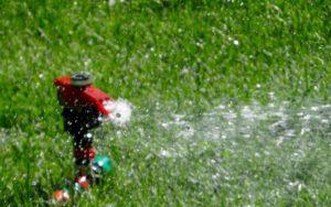 sprinkler-1209900_1920